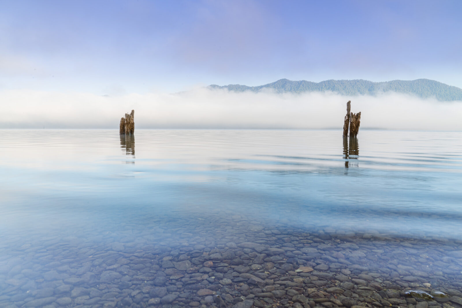 Lake Quinault at sunrise in Olympic National Park
